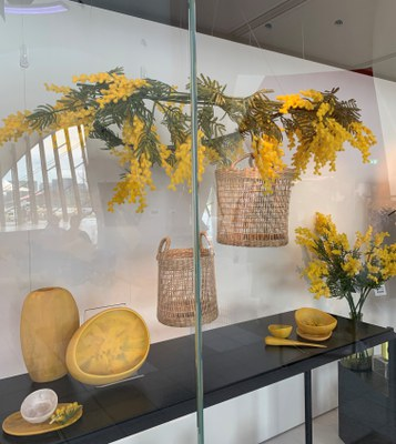 Wattle window - NMA Sept 2020