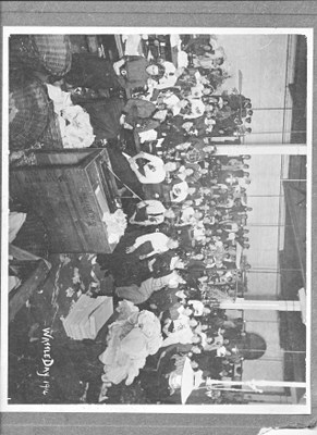 Wattle Day celebrations in Brisbane in 1914 Courtesy of Lynne Hanley