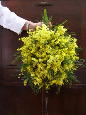 Wattle - podium arrangement by Dawn Searle