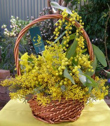 Wattle basket by Dawn Searle 2008