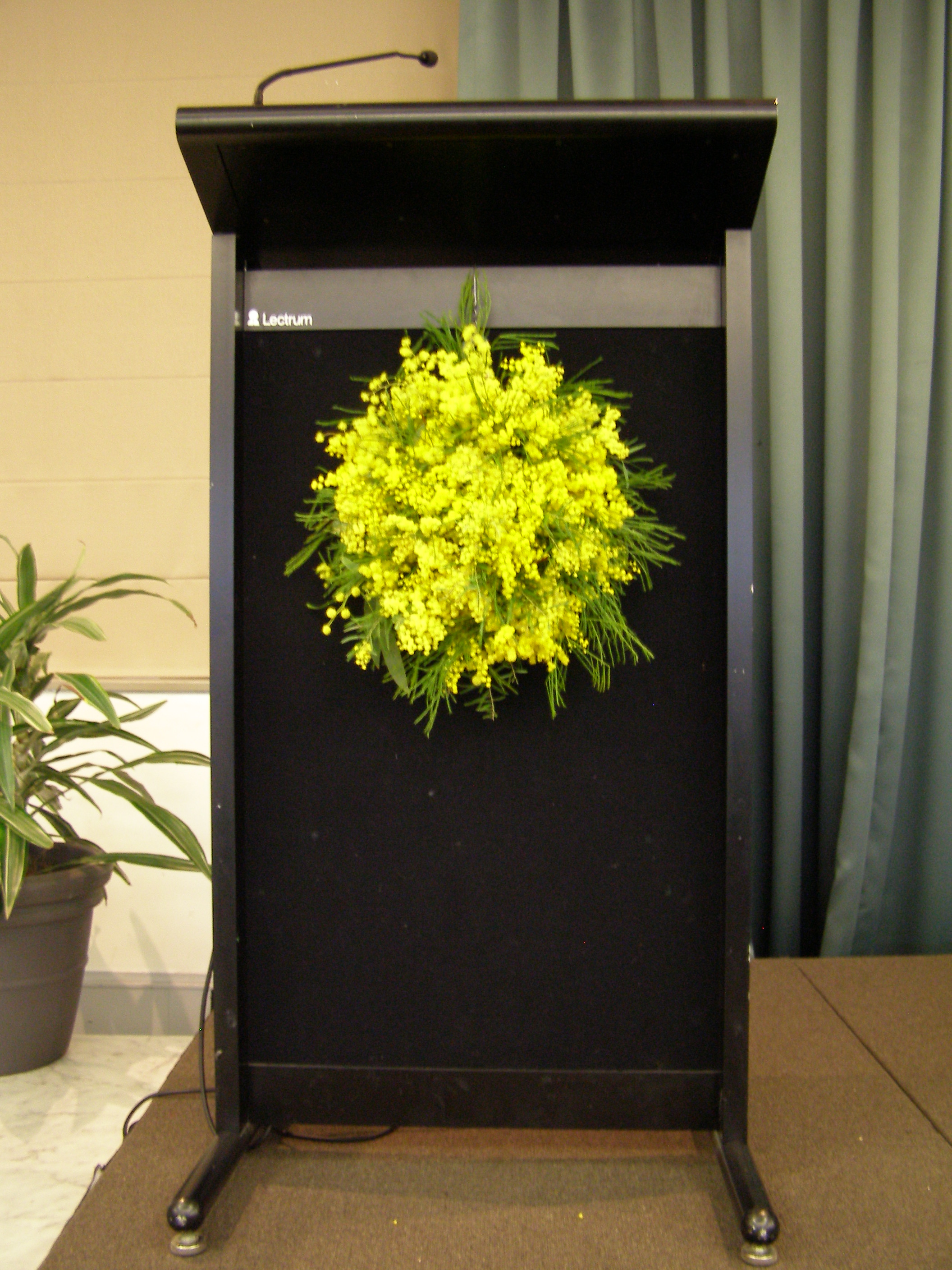 Lectern bouquet by Dawn Searle