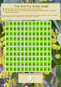 Wattle word game for kids