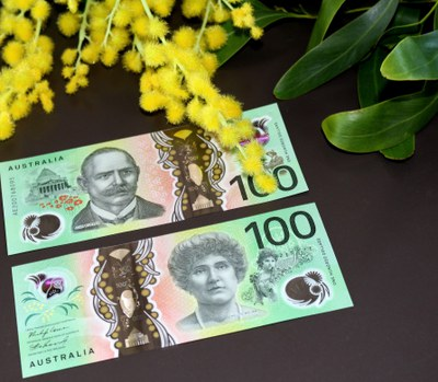 4100 banknote michelle McMahon 29 Oct 2020